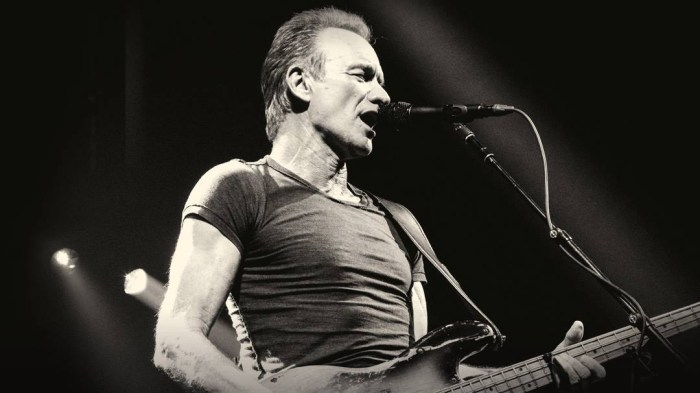 sting-cinque-concerti-estate-2018-italia-end-of-a-century-foto