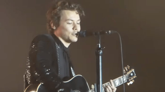 harry-styles-anna-video-live-basilea-concerto-end-of-a-century-foto