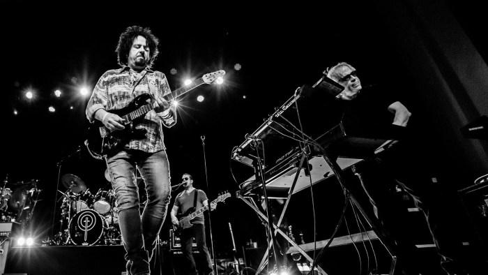 Toto - Foto di Kevin Albinder