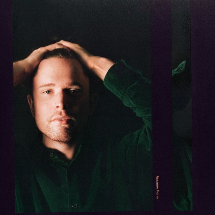"copertina nuovo album James Blake ""Assume Form"""