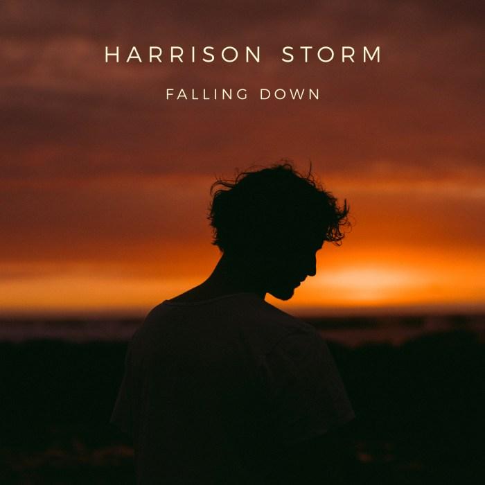 "Harrison Storm copertina EP ""Falling Down"""