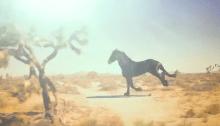 """Zucchero torna con il nuovo singolo e video """"Freedom"""""""