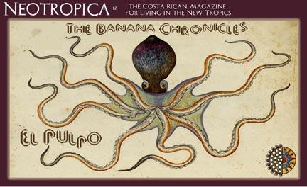 united fruit company octopus
