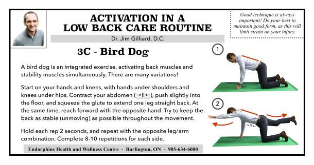 3C Activation low back care