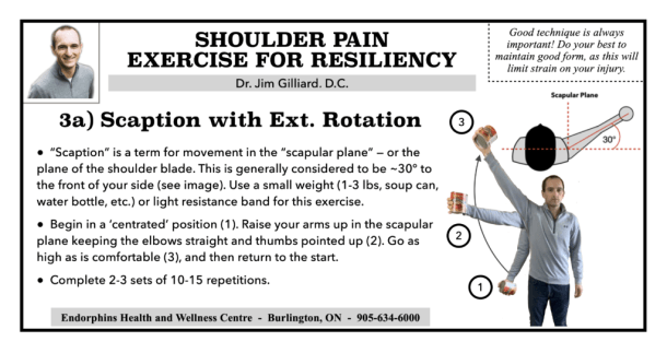 Shoulder Exercise Scaption