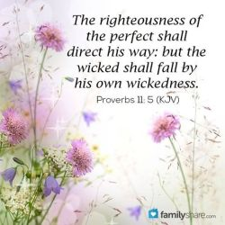 Message - Bible the wicked will fall