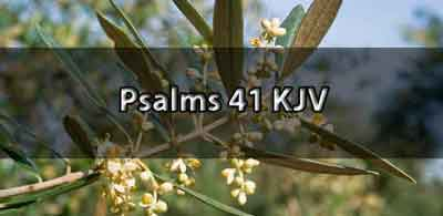 Psalm 41 King James Version (KJV)