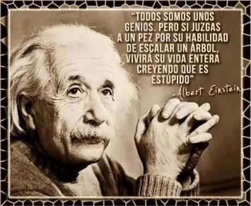 Einstein-13