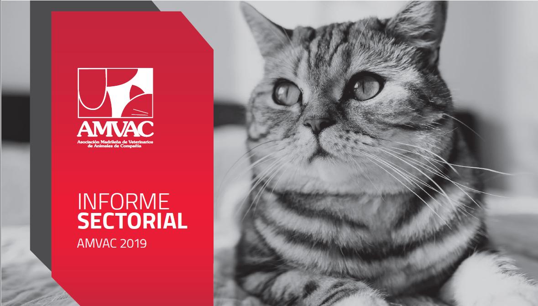 Los avances técnicos y la especialización veterinaria aumentan un 10% la esperanza de vida de los gatos y un 4% la de los perros