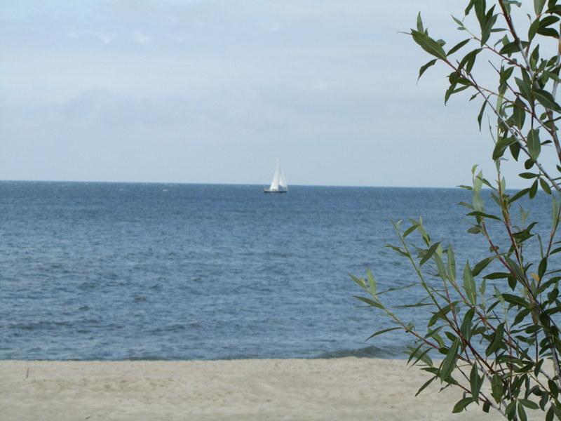 Jastarnia 2013, havet