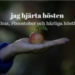 höstbilder: jag hjärta hösten. bild på äpple i hand