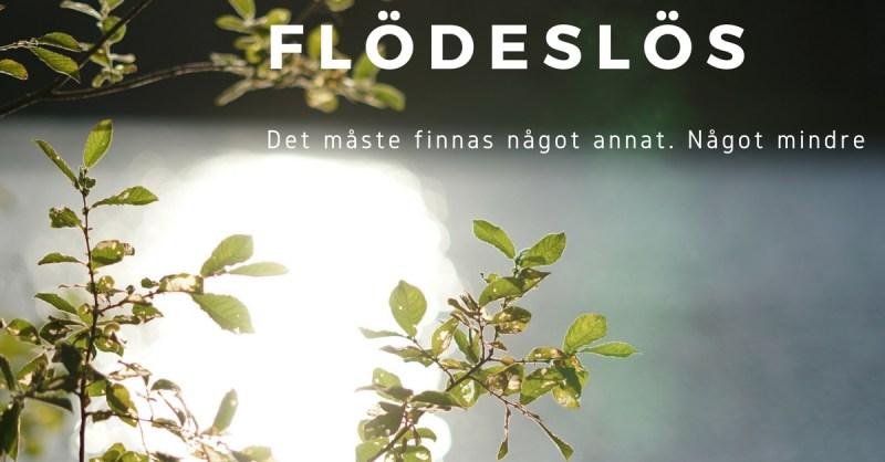 bild på vatten och sol, löv. inlägg om slow living svensk blogg
