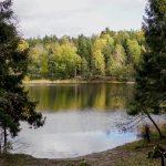 köpstopp 2021 kan handla om mer naturtid