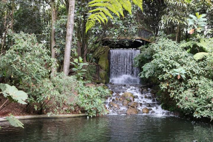 Cascada, Jardín Botánico de Bogotá; foto: Juan Daniel Correa