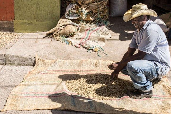 Tanteando Café, Supía – Caldas. Foto: Fernanda Pineda