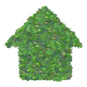 Casas ecológicas. Decisión inteligente