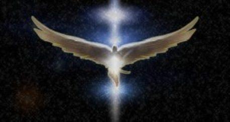 angel-758415