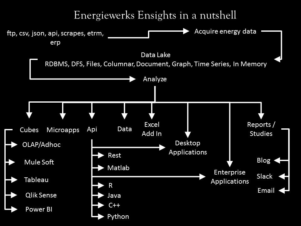ensights-in-a-nutshell