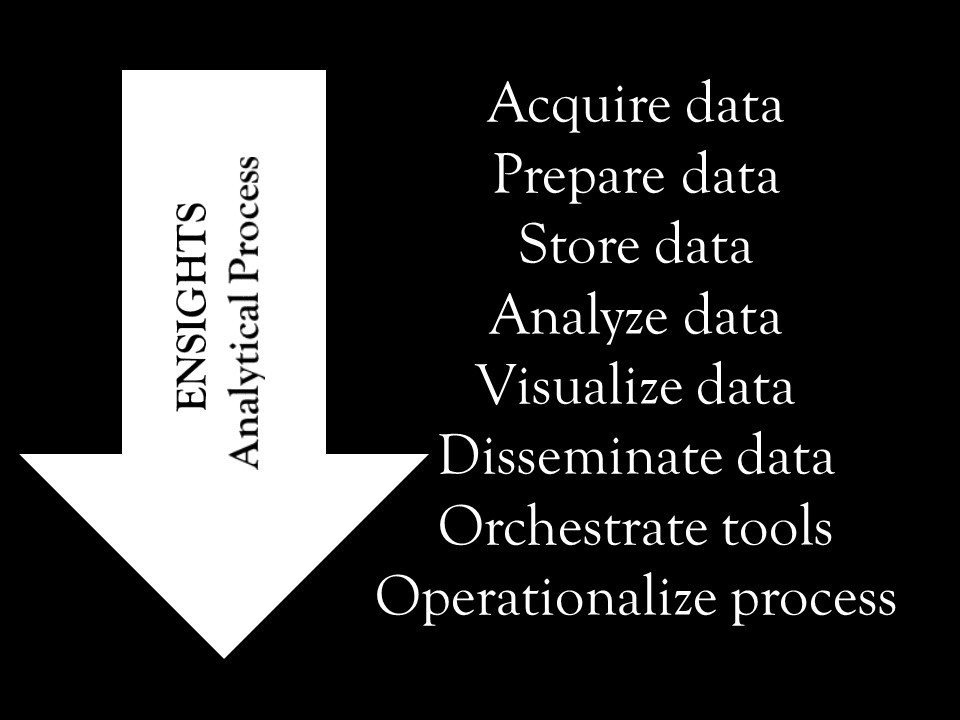 ensights-analytical-process
