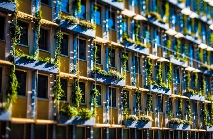 """Beč je cool! – glavni grad Austrije postaje još """"zeleniji"""""""