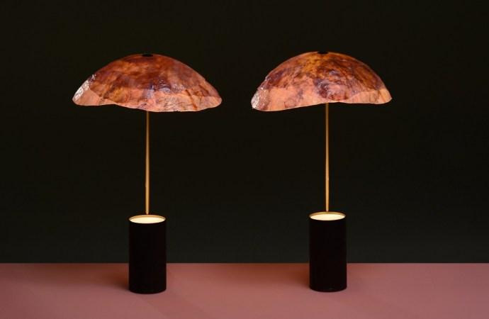 Dizajneri listove crvenog kupusa pretvorili u sjenila lampi