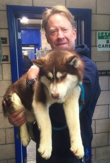 Mark Lovretin, PSEG Chief Photographer, holding a rescue Husky dog from South Korea.