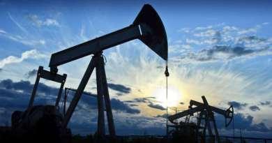 Прибыль «Зарубежнефти» в минувшем году превысила 10 млрд руб