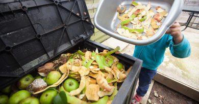 Биодизель из органических отходов ресторанов
