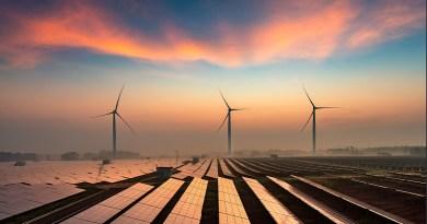 Обзор мировой энергетики на 2020 год от МЭА