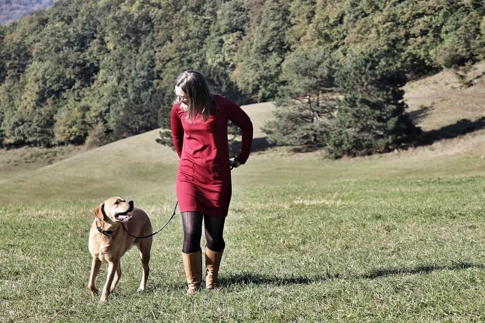 Eine junge Frau geht mit ihrem Hund auf einer großen Wiese. Das Bild soll die Vision: Freiheit für Mensch und Tier der Unternehmerin darstellen. Energetik & Seelenkommunikation für Mensch und Tier