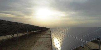 solarenergie-indien-billiger-als-kohle