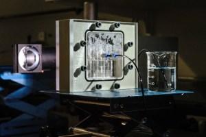 kuenstliche-photosynthese-sonnenenergie-energiewende