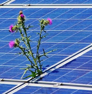 leistungsabfall-solarzellen