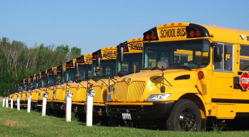 a row of school buses