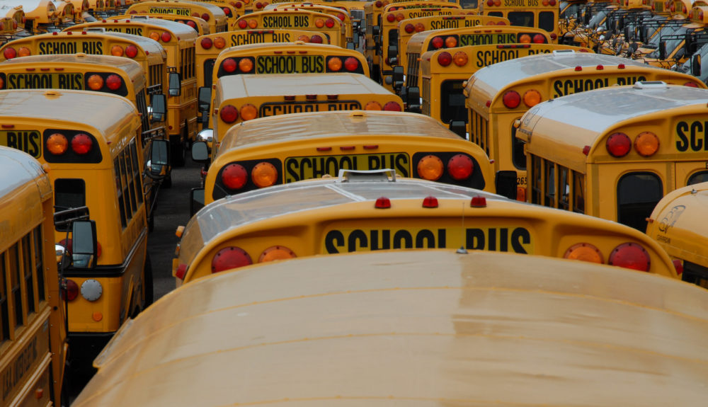 rows of yellow school buses, pictured from behind, fill the frame