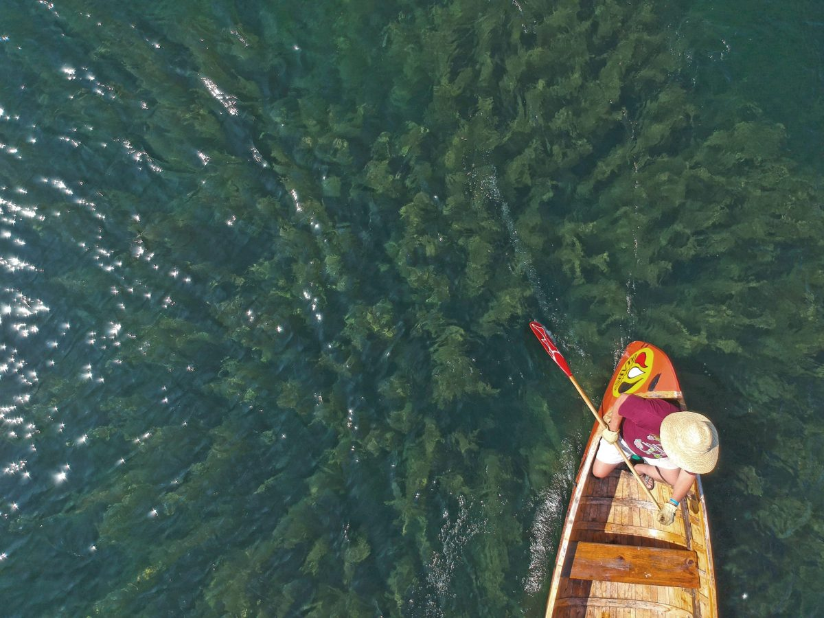 A bird's eye view of a person steering a canoe.