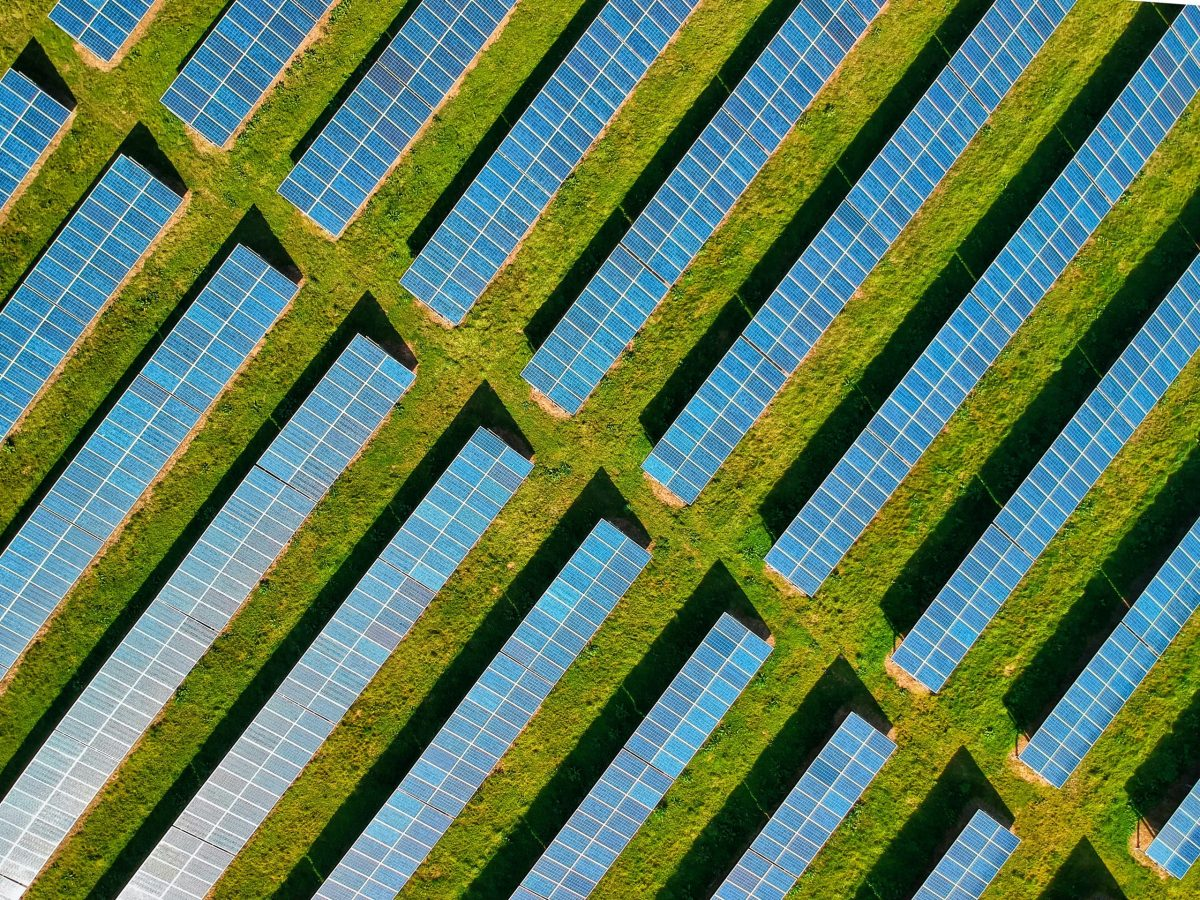 Bird's eye view of a field of solar panels