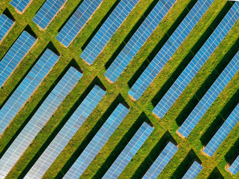 Bird's eye view of a field of solar panels
