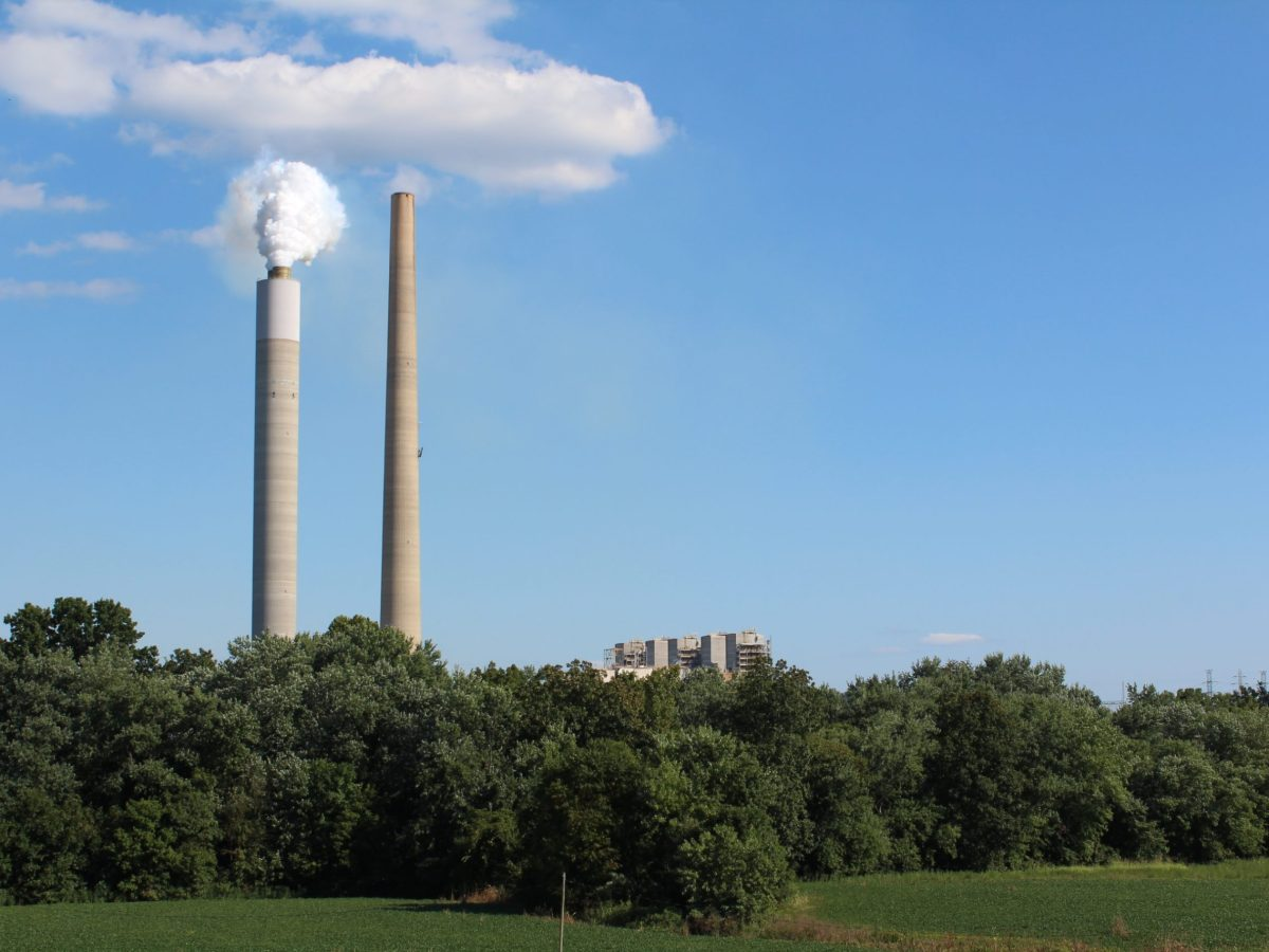 Two smokestacks rise above a row of trees.