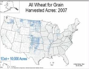 wheat growing acres USA map