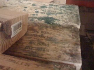 moisture management mold on lumber indoor air quality asthma