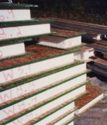 Structural insulated panels reduce thermal bridging.