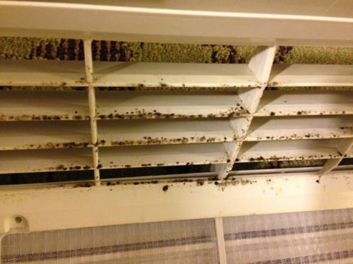 ptac hvac dirty moldy fan housing air conditioner hotel