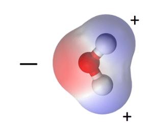 water molecule polar positive negative