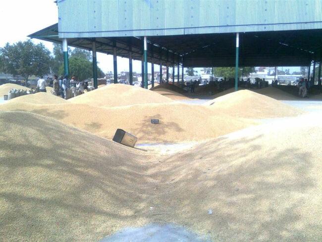 कृषि किसान मंडी उपज़ आंदोलन