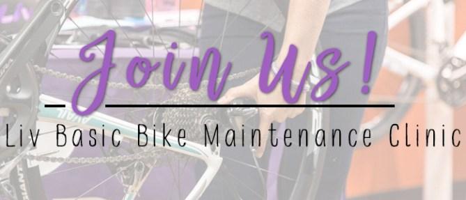 Asheville Bicycle Company Liv Basic Bike Maintenance Clinic