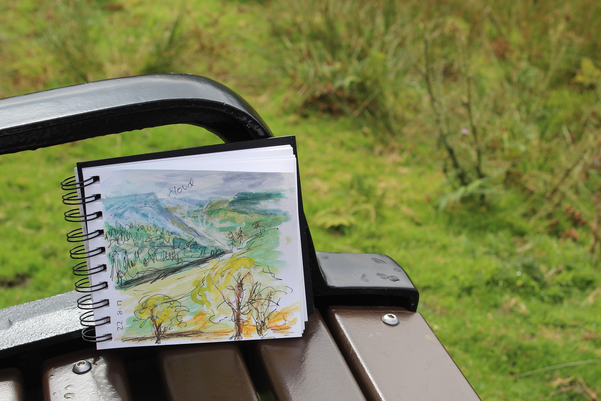 Au printemps, la nature se réveille, c'est le moment idéal pour observer la nature, la dessiner, l'illustrer, la croquer, ...
