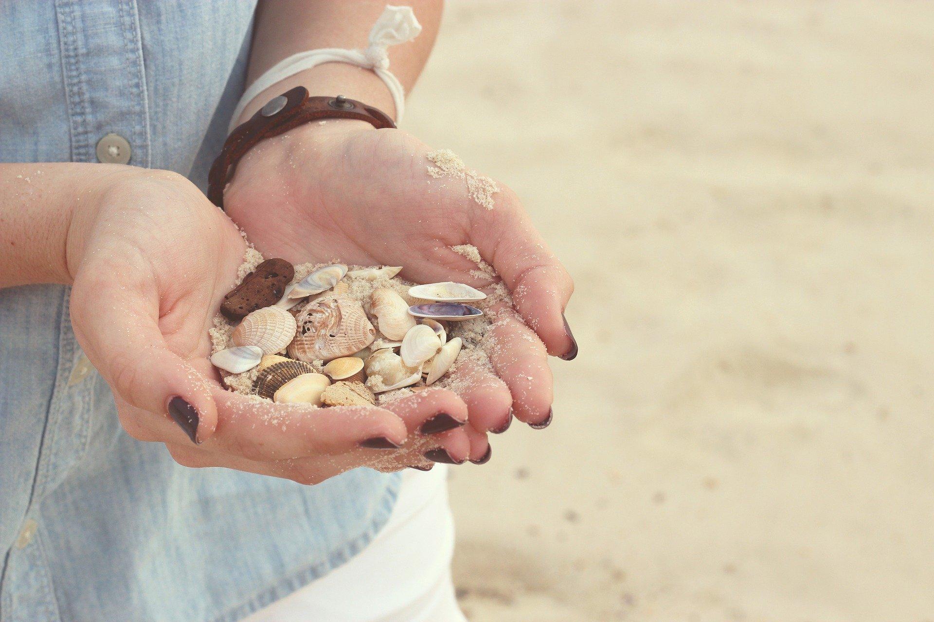 Faites la chasse aux coquillages en cherchant le plus petit possible et en découvrant le plus gros qui soit.