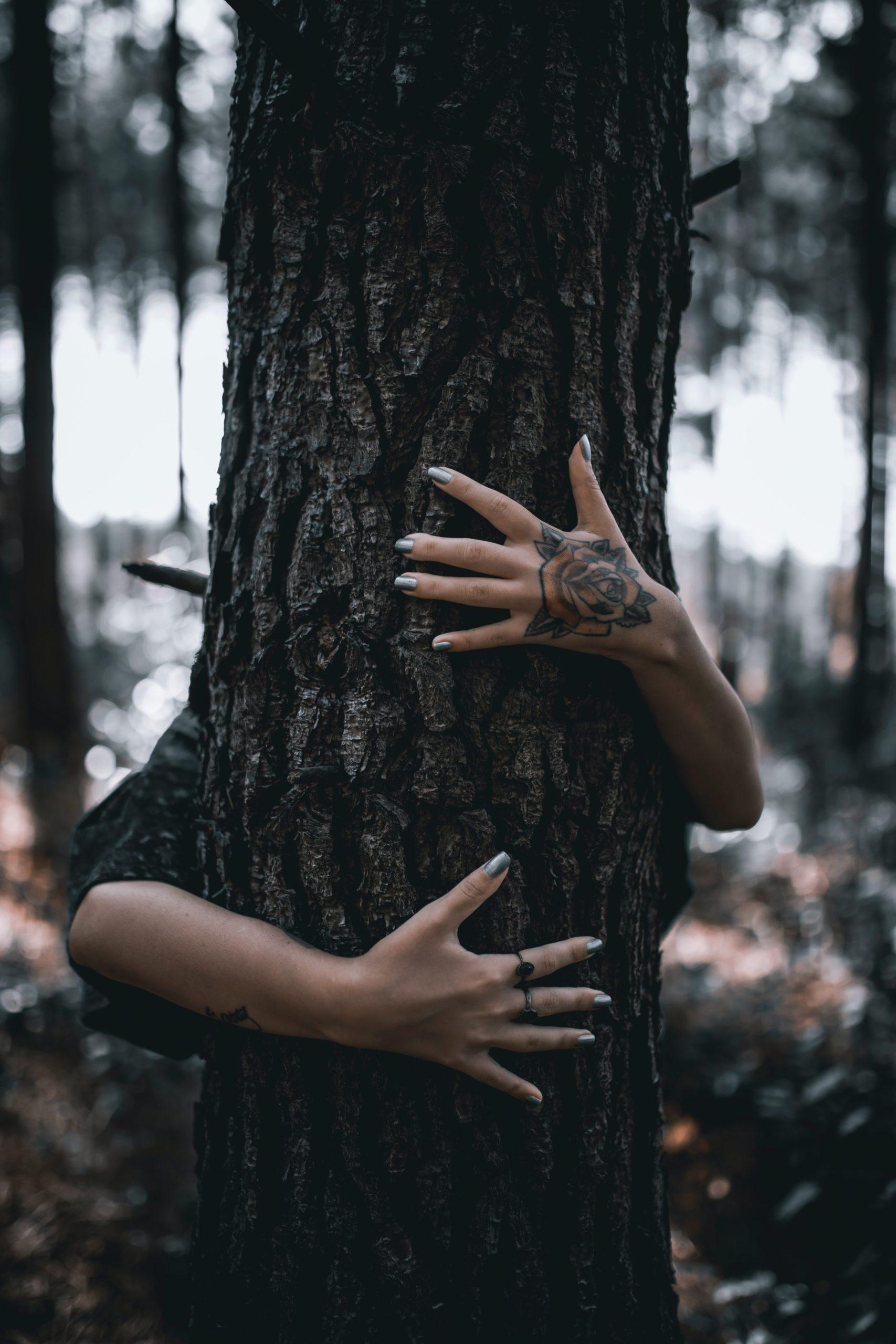 Faites des calins aux arbres ça fait du bien ! Cette pratique fait partie de la sylvothérapie.