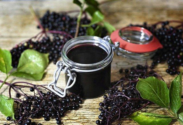 Il est possible de faire de la géle avec les fruits du sureau noir